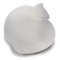 Kamm Spiegel Weiß Apfel