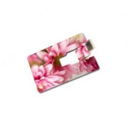 USB-Speicherkarte mit Foto